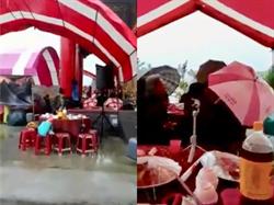 高雄人厲害了!普渡霹靂雨 台上「豔舞」狂跳