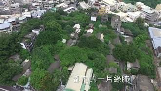 驚豔!更高視野看見彰化鐵道宿舍的綠色之肺