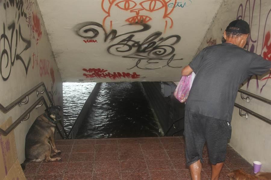 小東路地下道旁的人行道也積水,帶著狗的男子不敢涉水而過。(程炳璋攝)