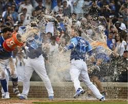 MLB》博特本月第2發再見轟 小熊擊敗紅人