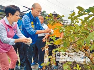 農損補貼 韓呼籲恢復九五制