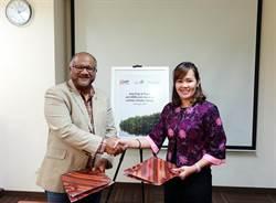 《產業》MERA護育印尼紅樹林,亞洲漿紙加盟