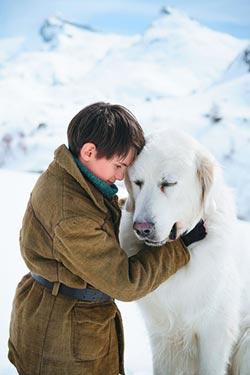 《靈犬雪麗》五年級的回憶