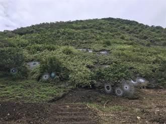 是梯田也是藝術品 森川里海濕地藝術季沿著海岸展出