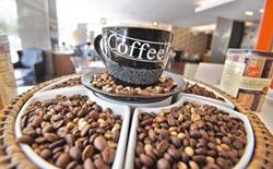 課業壓力大 19%高中生每日至少1杯!南韓立法 中小學禁售咖啡