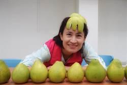 花蓮》花蓮文旦柚上市 蕭美琴戴綠柚帽促銷