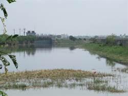 台南》黃偉哲勘查岸內排水 將協助爭取預算到位