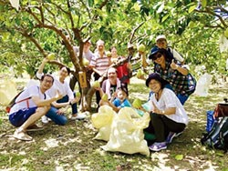 敏通快樂農場採柚 把握最後周末