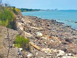 新豐最毒海岸線清汙 順利發包