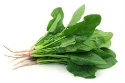 比鈣片效果還強 專家推薦4道補鈣家常菜