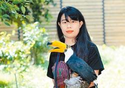 鮮麗巨嘴鳥 醜小鴨變天鵝