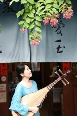 丟掉古典樂譜 鍾玉鳳用琵琶向世界大冒險