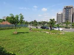太平麗園公園變大了!西側國產署荒地變綠地
