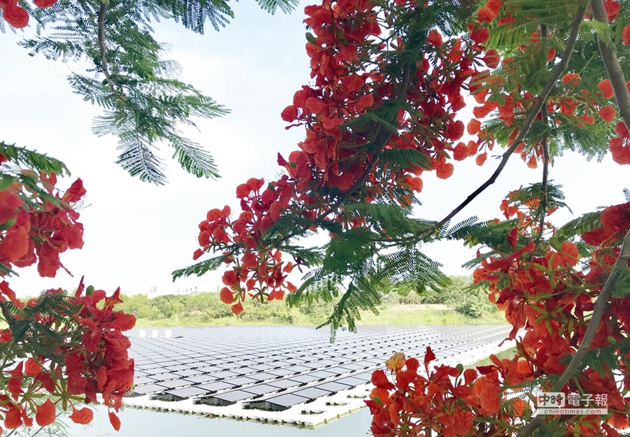 夏爾特拉浮動式太陽能發電案場。圖/業者提供