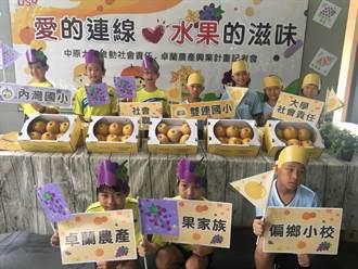 中原大學雙連梨社會企業 助卓蘭水果創銷路