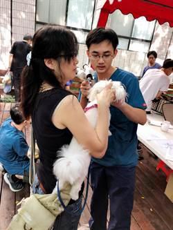 中市動保處防疫狂犬病 獸醫、民眾響應宣導