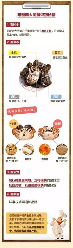 「冒牌」陽澄湖大閘蟹橫行 陸媒揭露網購三大偽招