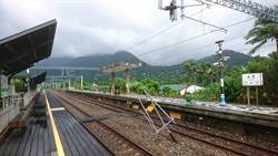 台東》山里車站大樹倒塌壓斷電車線 列車暫以柴油機車牽引