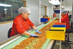 陸企大老:貿易戰無助於美就業