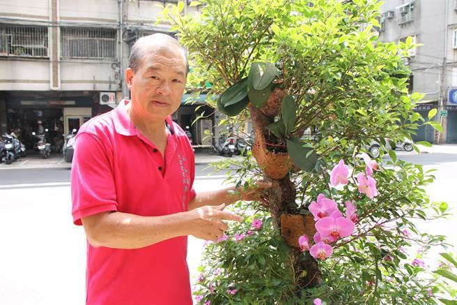 新北市永和區民富里長李宗賢本身經營家具行,對於改造舊家具特別有一套,他拆解舊床墊的草蓆和夾層,用來培育植栽。(葉書宏翻攝)
