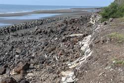 最毒海岸線清運工程動工 預計明年1月清除