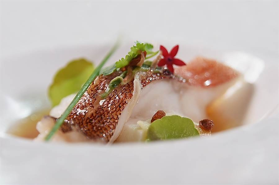 高鋼輝料理的〈窖藏醇香芙蓉海星斑〉,下襯魚豆腐並用金華火腿、醃黃瓜搭配呈盤,最後以紹興酒和雞油提味。(圖/姚舜)