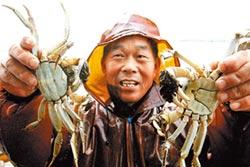 還太湖碧水 明年禁圈養大閘蟹