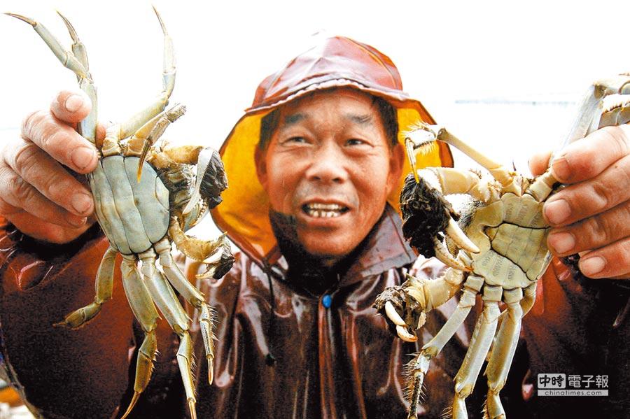 一名蟹農展示捕上來的大閘蟹。(新華社資料照片)