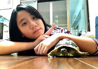 巴西龜和陸龜有「死魚臉」非常可愛 飼主蕊竹視2龜如兄弟姊妹