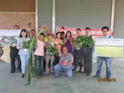 中市環保局觀摩會 分享農民成功經驗