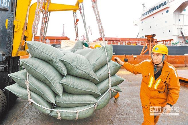 工人在青島港碼頭轉卸美國運來的大豆。(新華社)