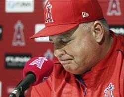 MLB》天使震撼彈 總教練索西亞宣告離去