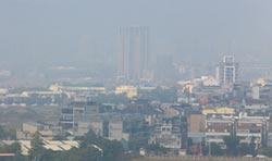 霧霾籠罩 龍團隊想靠花博接地氣
