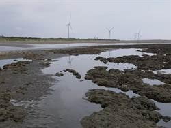 中油宣示貫徹天然氣能源建置及維護藻礁永續之決心