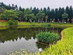 過嶺森林公園8日啟用 四季景色不同