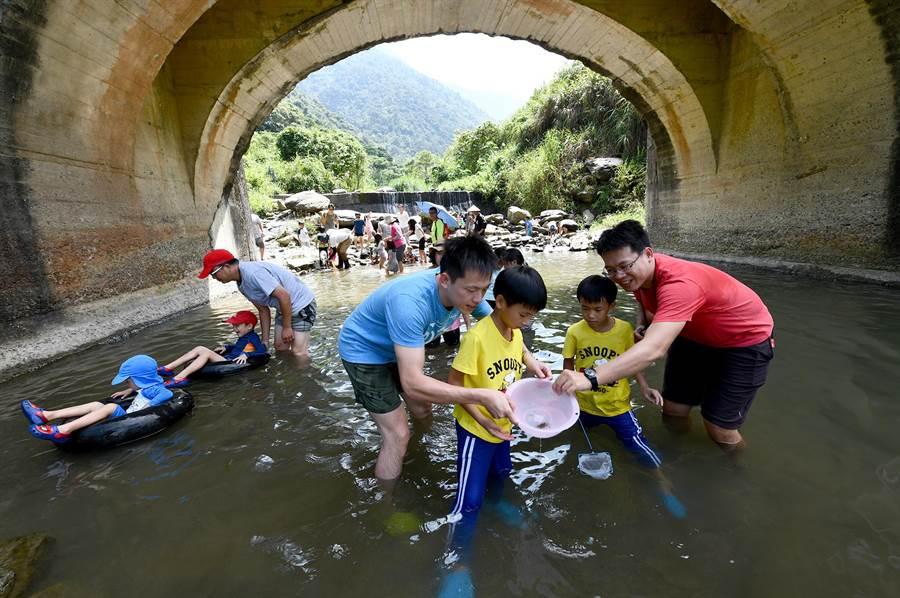 向天圳溪谷美如詩畫。從高雄慕名來訪,透過附近農場導覽的嚴姓家族,親子戲水摸螃蟹,玩得不亦樂乎!(沈揮勝攝)