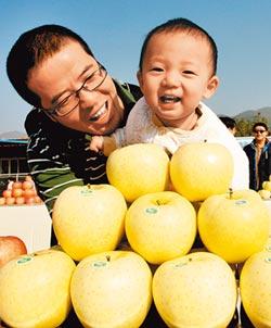 黃元帥、紅富士 新疆野蘋果後代