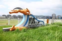 迎風狗運動公園整修 暫停開放3個月