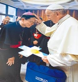 兩岸主教握手 陳建仁晤教宗