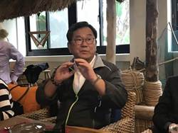 民進黨「呼應」反併吞遊行 陳明文:黨內憂心被點名