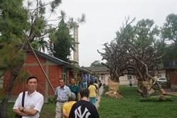 舊糖廠宿舍改造文化園區  帶動善化觀光發展