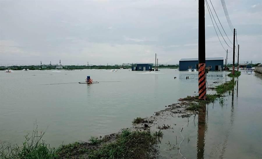 823水災造成高雄永安養殖生產區漁塭溢堤。(資料照,農委會提供)