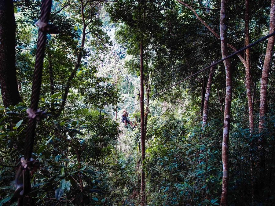 來到泰國清邁,喜愛刺激的旅客能至叢林進行近年正夯的飛索體驗,享受在叢林間穿梭飛行的快感。(圖自VnGriji-2013-from-flickr)