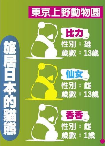 旅居日本的貓熊 東京上野動物園