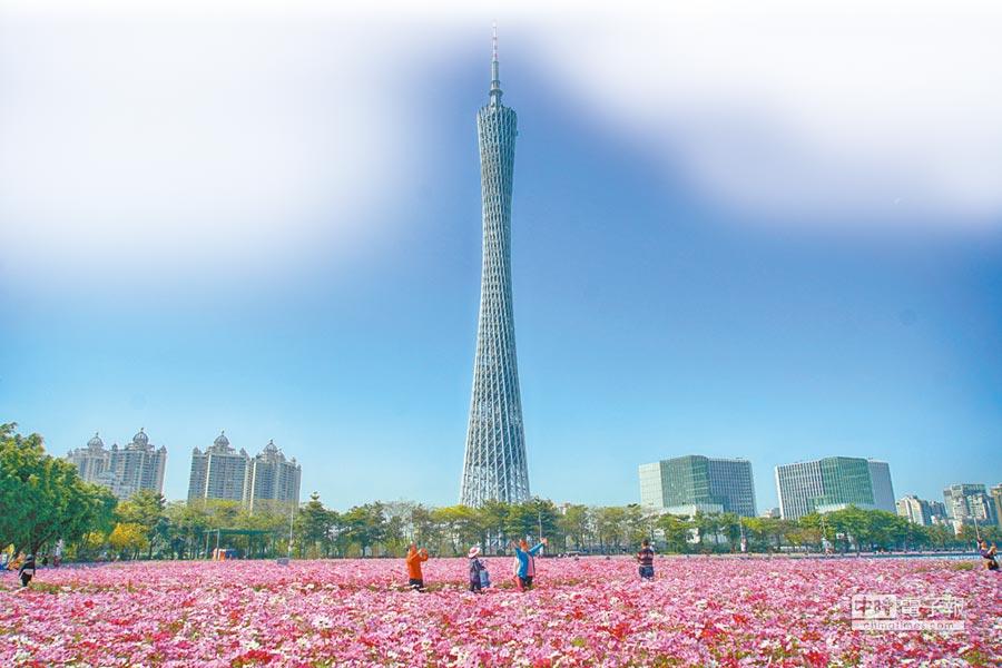 從廣州市海心沙公園拍攝的廣州塔。(新華社資料照片)