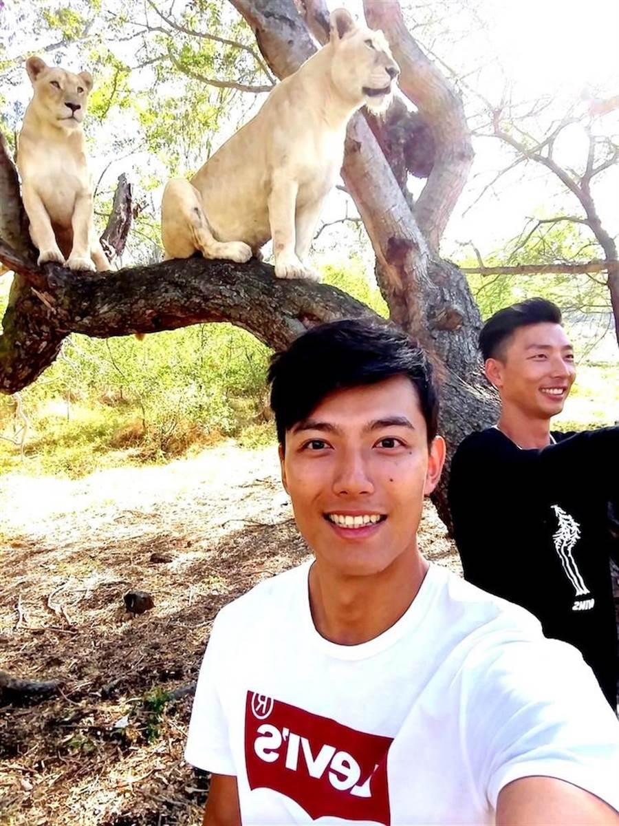 賴東賢(左)和賴俊龍近距離接觸獅子。(三立)
