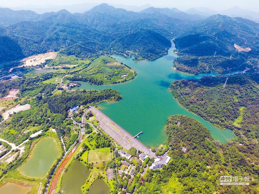 中山著力打造多層級、多類型、全覆蓋的公園體系。(文波攝)