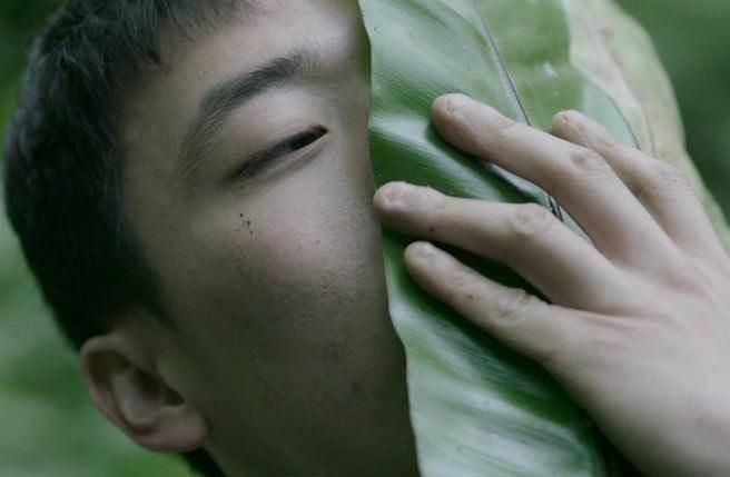 鄭波《蕨戀2》作品,單頻道錄像。圖/臺北市立美術館