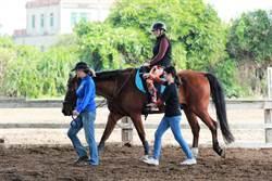 重建希望馬場 馬術治療急需外界援手
