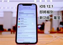 iOS 12.1 即將發表 新功能好多令人期待